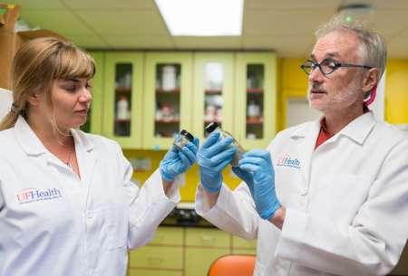 Drs. Devrah Arndt and Chris Vulpe look at nanowires in aqueous media.